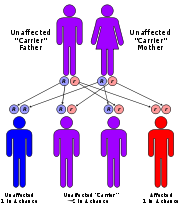 dubin johnson syndrome