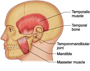 Homeopathic_doctor_chandigarh_drthind_temporomandibular-joint-dysfunction